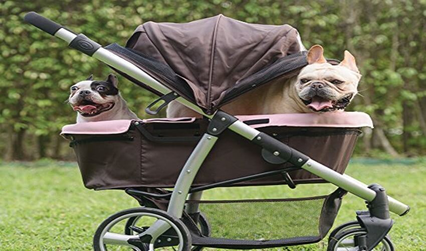 What You Need To Know Before Buying A Pet Stroller