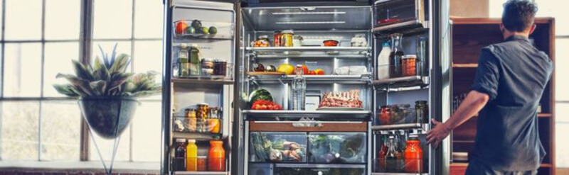 Top 6 Best Refrigerators under 1000